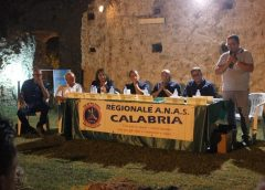"""""""Alfredo Filippone"""" terza edizione ricca di partecipanti e con tanti riconoscimenti con ANAS Calabria"""
